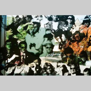 Kunst am Bau, 2008, Gestaltung einer Prallwand aus Glas, Höhe 2,20 m, Länge 28 m, keramischer Siebdruck auf Glas